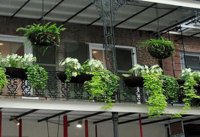Desain Lantai Atas Rumah dengan Balkon Multifungsi